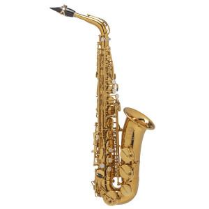 Selmer Paris Supreme Alto Saxophone DGG