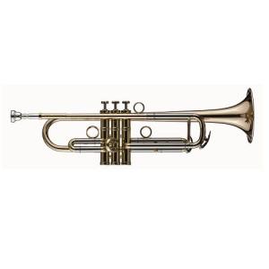 Trumpet SCHAGERL James Morrison Yellowbrass